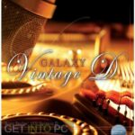 Best Service – Galaxy Vintage D Free Download PcHippo