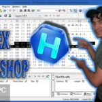 Hex Workshop Hex Editor Professional Free Download PcHippo