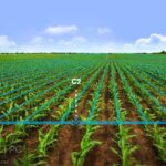 Lincoln Agritech IRRICAD Free Download PcHippo