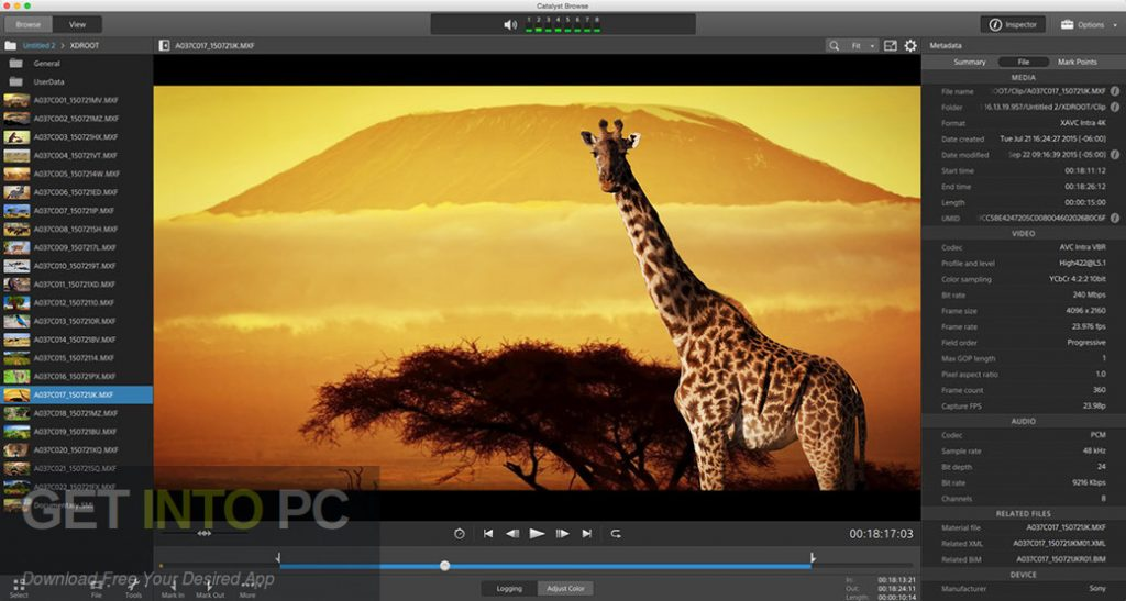 Sony Catalyst Edit Latest Version Download